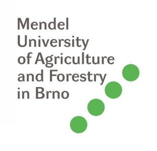 Logo MUAF